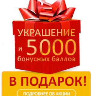Акция украшение и 5000 баллов в подарок